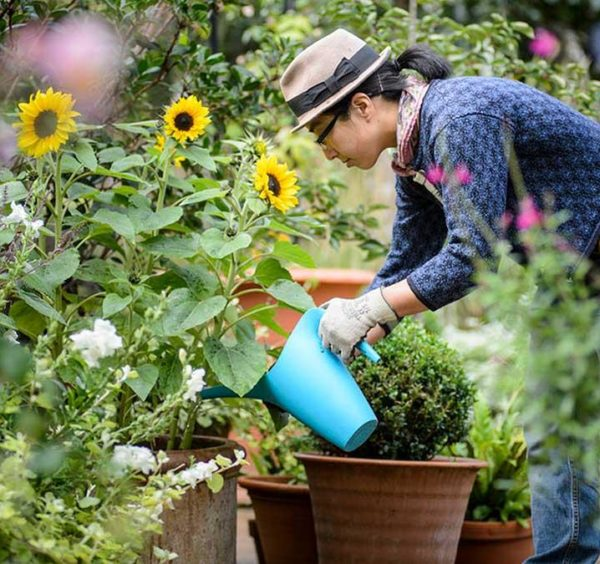 Four Easy Upkeep Suggestions For Garden Mowers