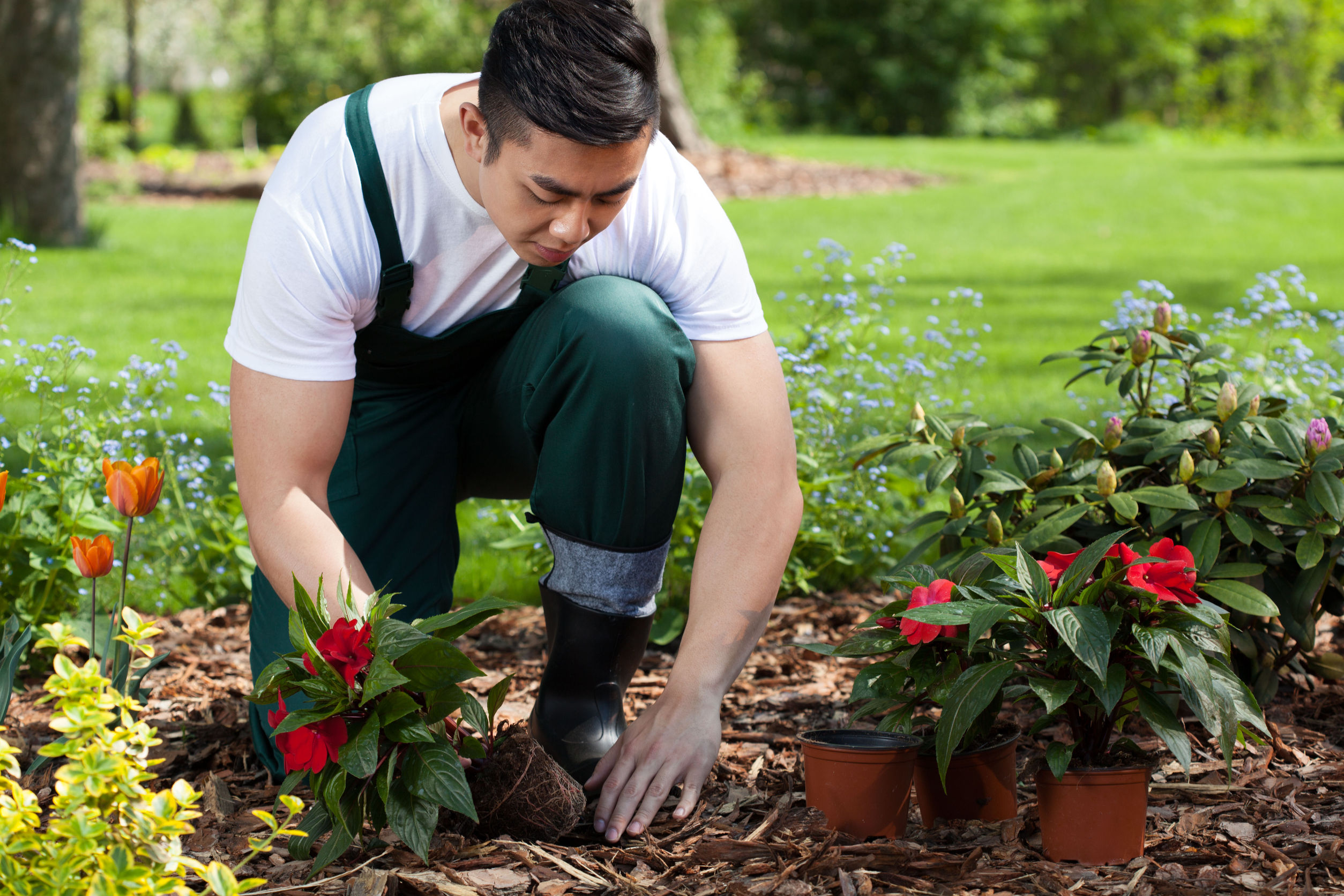 Have You Considered The Benefits of Artificial Turf?